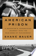 American prison : a reporter's undercover journey into the business of punishment /