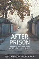 After prison : navigating adulthood in the shadow of the justice system /