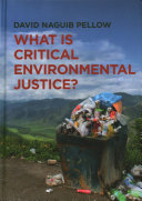 What is critical environmental justice? /